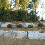 limestone cave waterfall raised beds